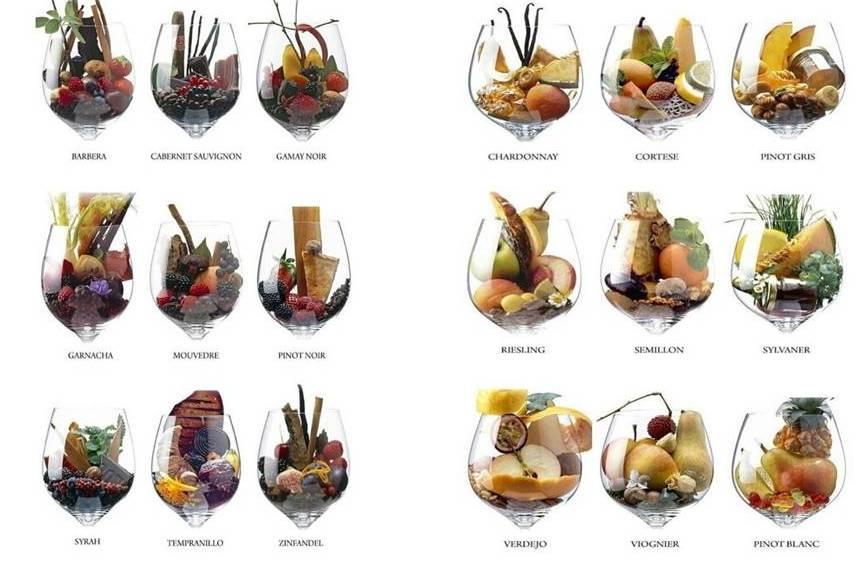 Aromas y sabores del vino