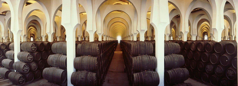 Los vinos de Jerez