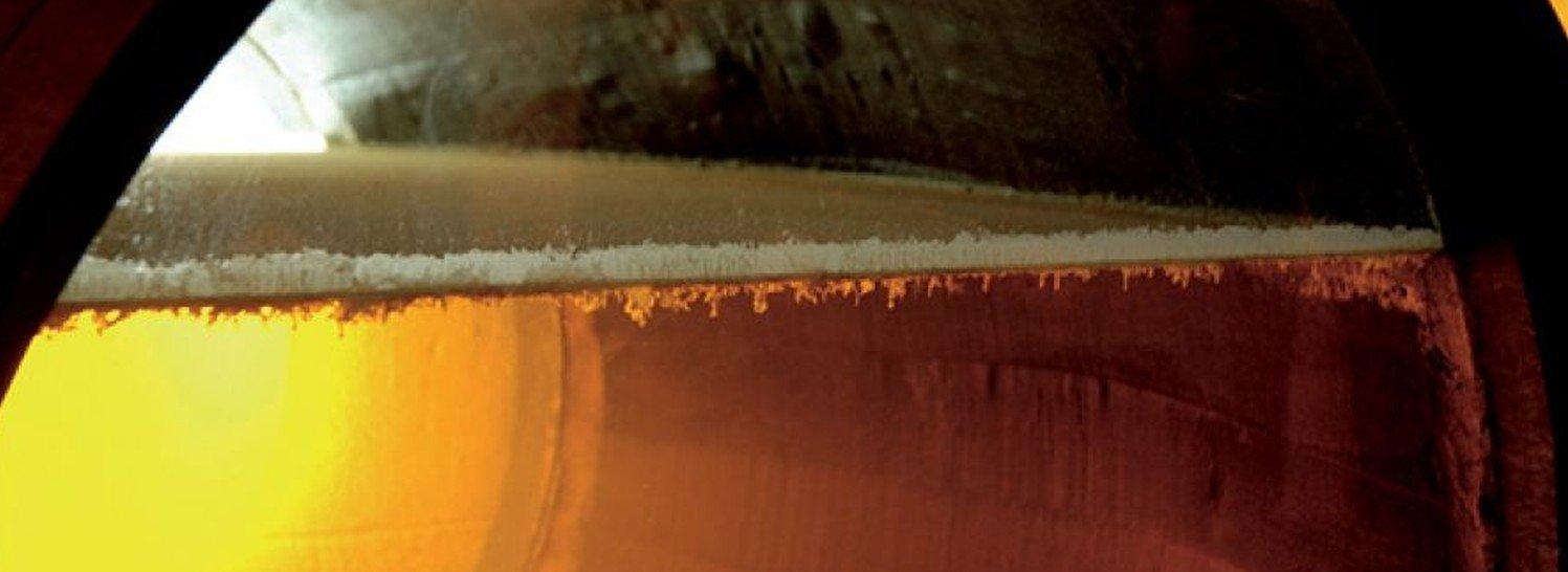 Crianza biológica vinos de Jerez